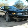 4th gen black 2001 Ford Mustang Bullitt GT V8 5spd For Sale