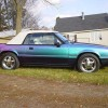 Chameleon 1992 Ford Mustang LX automatic 5.0 V8 For Sale