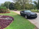 5th gen black 2014 Ford Mustang convertible V6 For Sale